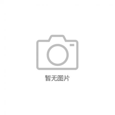 ABB轩致系列开关插座AF205-G;10232405